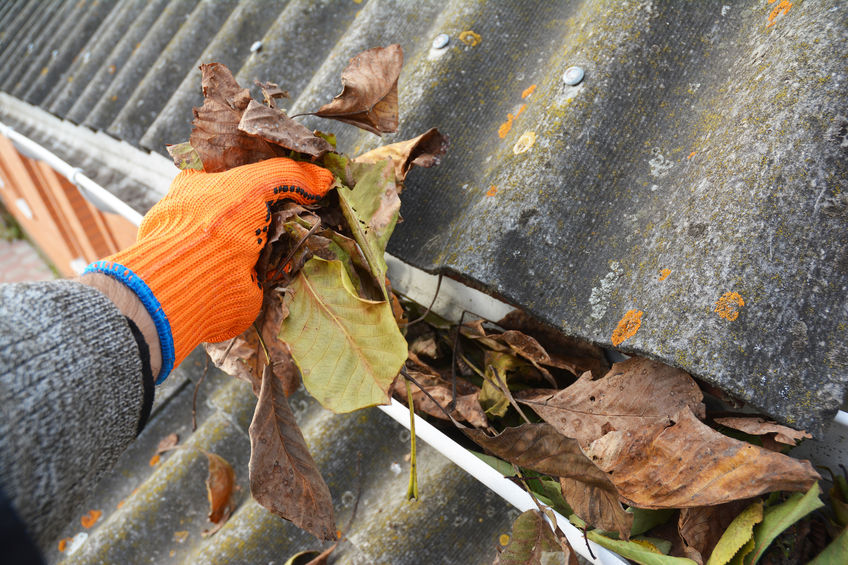 Man Cleaning Gutters in the fall